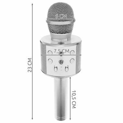 Karaoke Bluetooth Mikrofon sa Zvučnikom - Crni 131329